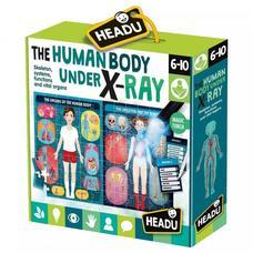 HEADU Fedezd fel az emberi testet!