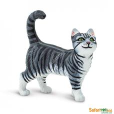 SAFARI Tabby Cat - Tabby macska