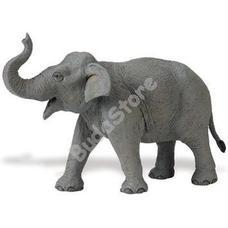 SAFARI Ázsiai elefánt - Asian Elephant