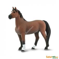 SAFARI Morgan Stallion ló