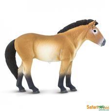 SAFARI Przewalski's Horse - Przewalski ló