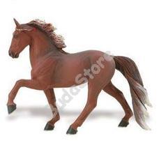 SAFARI Tennessee Walking ló - Tennessee Sétáló Ló
