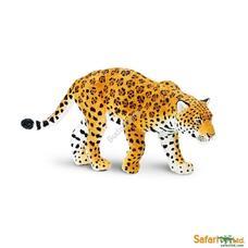 SAFARI Jaguar - Jaguár