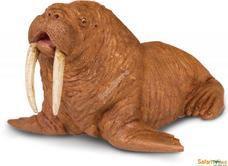 SAFARI Rozmár - Walrus