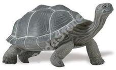 SAFARI Tortoise - Galápagosi teknős