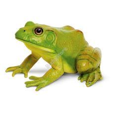 SAFARI American Bullfrog