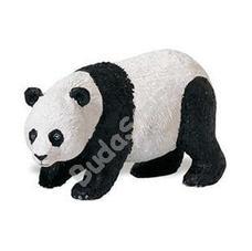 SAFARI Panda maci